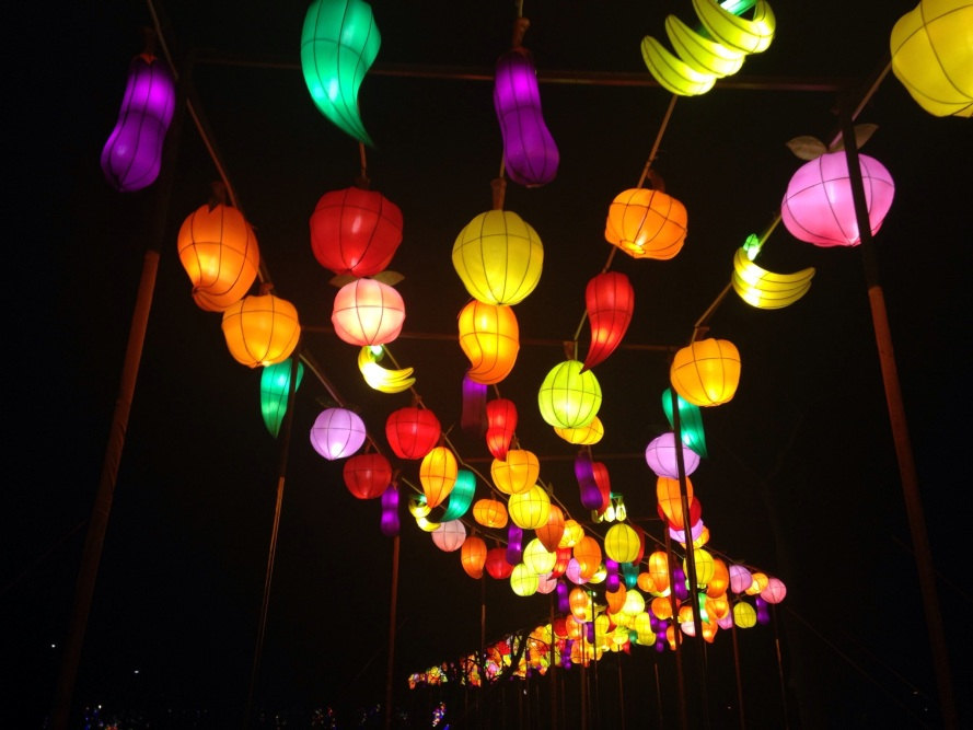 China Light Utrecht